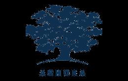 solveninja parnters logo